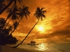 Amazing Beach Wallpaper_034