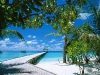 Amazing Beach Wallpaper_046