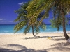 Amazing Beach Wallpaper_065