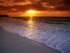 Amazing Beach Wallpaper_087