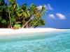 Amazing Beach Wallpaper_136