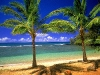 Amazing Beach Wallpaper_143