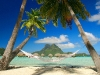 Amazing Beach Wallpaper_148