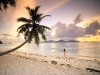 Amazing Beach Wallpaper_151