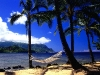 Amazing Beach Wallpaper_195