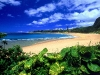 Amazing Beach Wallpaper_197