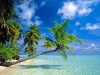 Amazing Beach Wallpaper_228