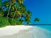 Amazing Beach Wallpaper_241