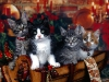 christmas_wallpaper_011