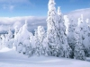 christmas_wallpaper_013