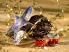 christmas_wallpaper_018