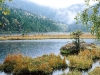 small-arber-lake-bavarian-forest-germany