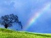 rainbows_and_lightnings_002