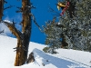 snowboarding_wallpaper_026
