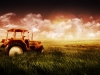 1212-tractor-field_003